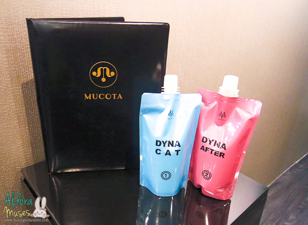Headlines Hairdressing, International Plaza - Argan Oil Hair Treatment (Mucota DYNA Oil Hair Treatment)