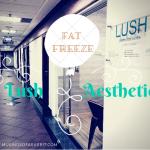 LushAestheticsPteLtd FatFreezingReview