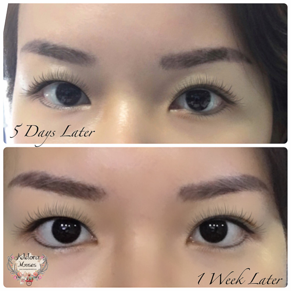6d eyebrow embroidery by eagle beauty aldora muses for 1 salon eyebrow embroidery
