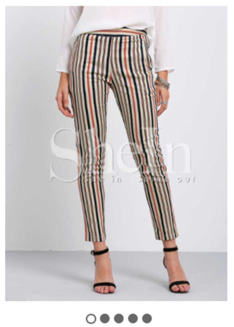 SHEIN Multicolor Verticle Stripe Pockets Skinny Pants