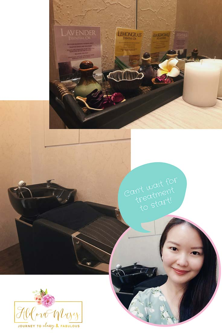 4-Step Signature Meridian Hair Treatment at Beijing 101